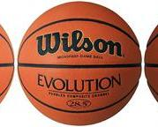 "Wilson Evolution 28.5"" Basketball"