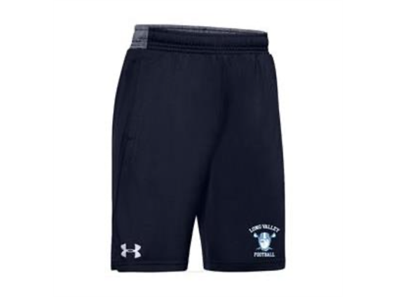 Under Armour Pocketed Shorts